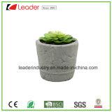 Plantador decorativo del cemento de los artes con Artificial-Suculento para la decoración casera