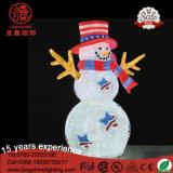 LED décoratif IP65 Acrylique 3D Snowman Reindeer Penguin Motif Noël avec Ce