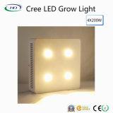 Il Classico-Tipo 4*200W LED si sviluppa chiaro con i chip del CREE per le piante della serra
