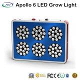 Design clássico Apollo 6 LED Grow Light para ervas e flores