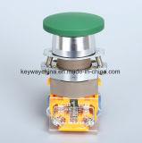 Serie del interruptor de pulsador de la chavetera de la seta La118A