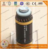 Mv 105 알루미늄 지휘자 1/0 AWG XLPE 절연제 PVC 칼집 지하 고압선