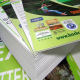 Stampa impermeabile durevole stampata personalizzata della scheda di Corflute