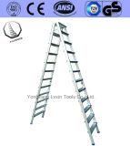 De uitstekende Ladder van de Stap van de Kwaliteit van 3 Stappen