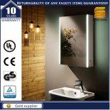 Specchio della stanza da bagno, con l'indicatore luminoso di 2700/1200k LED e Governo dello specchio di trucco