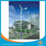 30W 태양 LED 정원 빛 공장 OEM