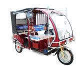 전기 3대의 짐수레꾼 자동 인력거 세발자전거 전기 차량