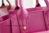 Sacchetto di mano di cuoio dell'unità di elaborazione di mini Crossbody sorriso popolare del sacchetto di 2017 Hcy-3161