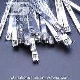 De volledige Band van de Kabel van het Roestvrij staal van het Type van Ladder van pvc
