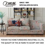 Amerikanisches Land-Art-Gewebe-Sofa für Hauptgebrauch (M3012)
