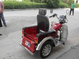 Mini110cc Disabled Vehicle Handicapped Tricycle für Deformed Man