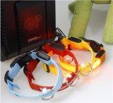 3あなたのためのモデル点滅LED USBの再充電可能な飼い犬猫カラー鎖および犬は見られた金庫である