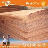 Folheado de madeira natural (Bintangor, Keruing, Okoume, PLB, Poplar)