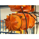 grue de levage électrique 110V/220V/380V/415V de chaîne de vitesse simple et double de 6m