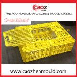 Molde plástico del embalaje del fabricante/del pollo de las aves de corral de la inyección