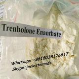 Trenbolone Enanthate 보디 빌딩 근육 99% 순수성 Parabolan Tren E 10161-33-8