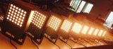 DMX 36W LED Garten-Punkt-Lichter, 36W RGB LED Rasen-Licht