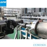 Ligne d'extrusion de panneau de cavité de mousse de PVC/PE/PP WPC