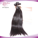 Gerades Jungfrau-Haar-Extensions-Kambodschaner-Haar