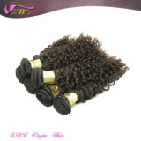 Virgin Indian Curly Human Hair Afro Kinky Hair Extensions