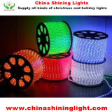 Color 50m Per Roll LED Rope Light를 변화한다
