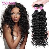Keine Verwicklung kein verschüttendes italienisches lockiges peruanisches Jungfrau-Haar