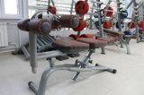 Suporte comercial da placa da máquina da força do equipamento da ginástica (XW38)