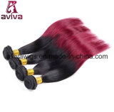 膚触りがよくまっすぐな波の100%年のバージンの毛のOmbreの自然な毛の拡張