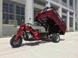 무거운 선적 세발자전거 250cc