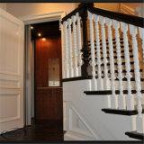 Mann-private Haus-Führungsleiste-Sicherheits-kleines Landhaus-Ausgangshöhenruder