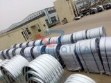 China 10 anos de fábrica produziu o preço estrutural galvanizado das placas