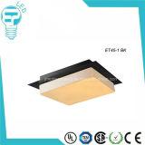 Moderne LED-Deckenleuchte-hängende Lampen-Vorrichtung 24W kühlen Licht ab