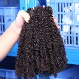 사람의 모발 공장 직접 가격 최고 질 깊은 컬 페루 아프로 비꼬인 꼬부라진 Coily 도매 크로셰 뜨개질 제품 머리
