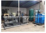 Système de compresseur d'air de vis de piston pour l'animal familier (KSP55/45-40)