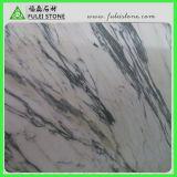 Arabescatoの白い大理石のタイル