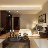 Camera da letto di legno personalizzata moderna di progetto dell'hotel dell'impiallacciatura che fa scorrere guardaroba (YG15-WV01)
