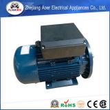 AC 단일 위상 240V 낮은 Rpm 전기 모터