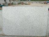 La Chine un trottoir blanc de granit de perle de Shangdong de pente