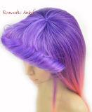 Das mulheres bonitas da forma da cor da tintura perucas elevadas retas do Synthetic de Qualtiy