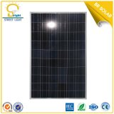 Zonne Products 8m Pool 80W Solar Street Light