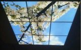 Painel de parede novo do diodo emissor de luz de RoHS 600*600 do Ce da luz 24W do ecrã plano do diodo emissor de luz do painel do modo