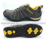 Sports extérieurs de chaussures de femmes/hommes montant des chaussures de formation