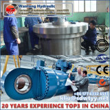 Grote de douane droeg Hydraulische Cilinders voor de ZeeApparatuur van het Platform
