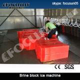 Pianta commerciale del ghiaccio in pani ghiaccio superiore di vendita di Focusun del grande