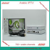 700+ HDアラビアChannels All Bein Sport及びAll Osn Channels及びAll Mbc Channels + Wireless Mouse Free GiftのChannelsのアラビアインターネットIPTV Box