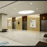 セリウムが付いているソース機械部屋の標準エレベーター