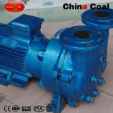 2BV bon marché Series Water Ring Vacuum Pump