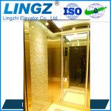 Elevatore della piccola asta cilindrica di prezzi bassi piccolo per la persona 2