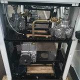 Erogatore del combustibile con un ugello automatico e due visualizzazioni dell'affissione a cristalli liquidi