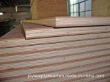 Areia da alta qualidade que madeira compensada para a construção